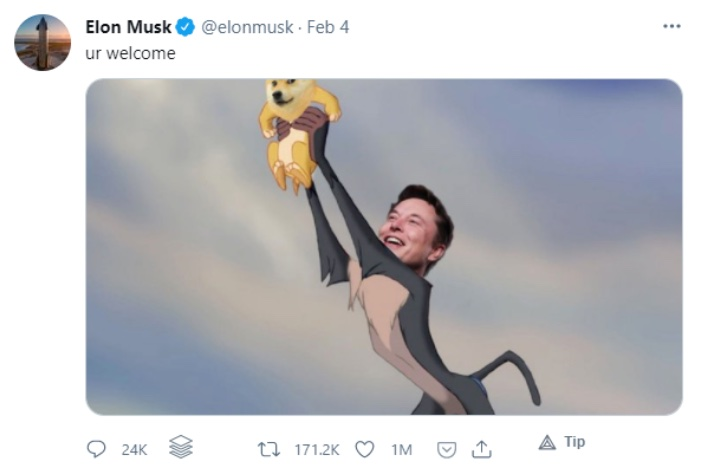 Elon Musk Doge Tweet Lion King